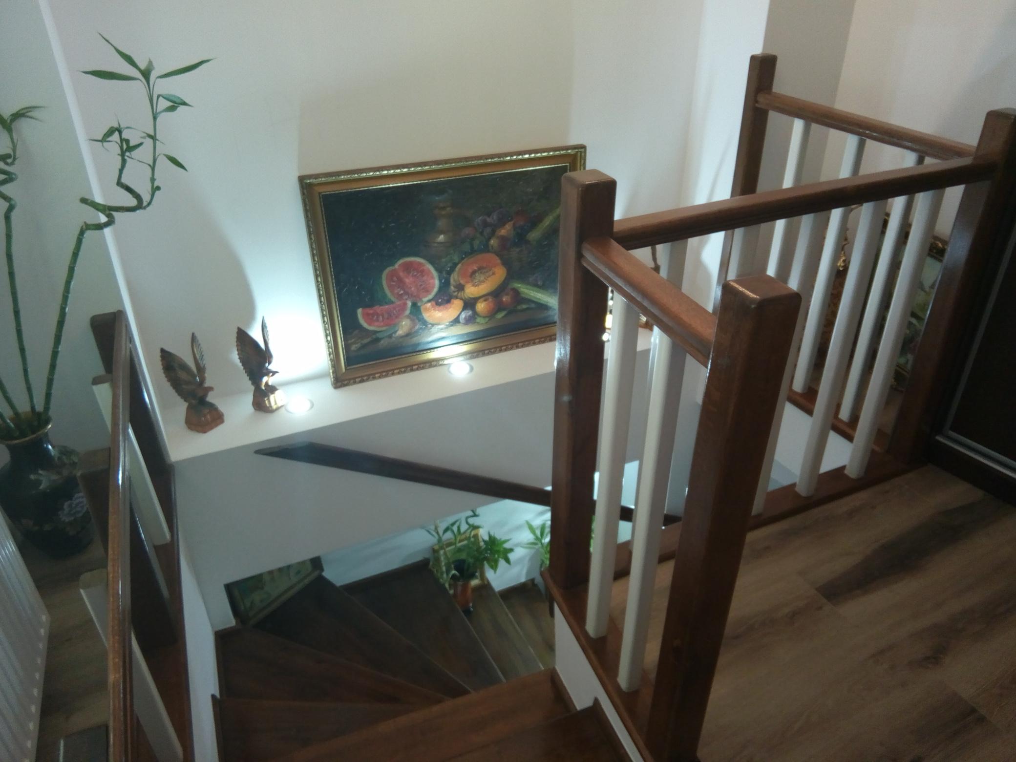 scari-interioare- (5)