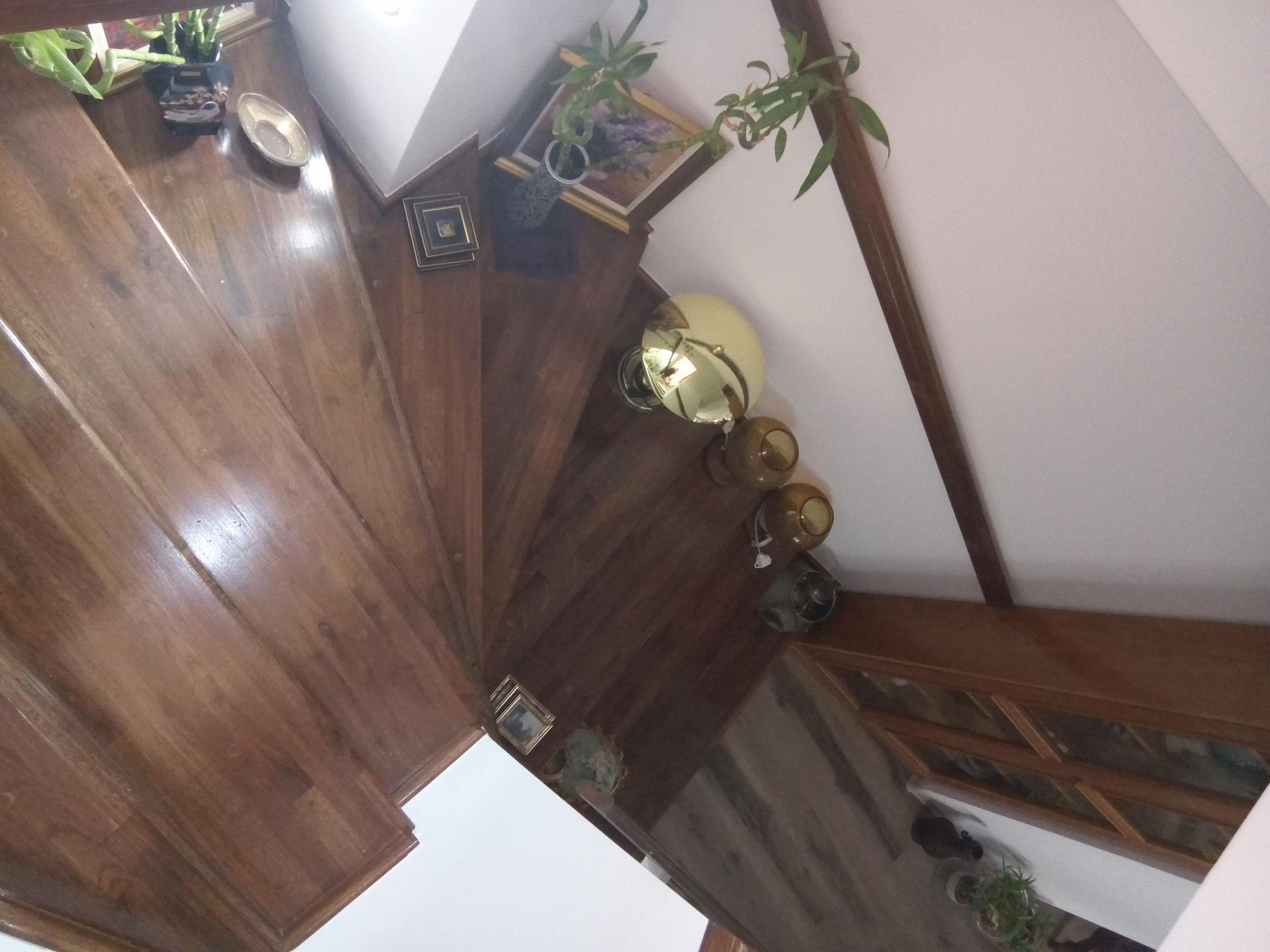 scari-interioare- (6)